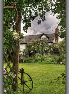 Lovely Cottage