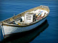 Ağustos 2014 Zeytinburnu balıkçı barınağı.SAMATYA/İSTANBUL