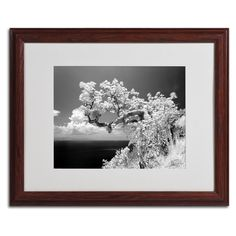 Intimate by Michael de Guzman Matted Framed Photographic Print