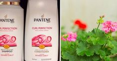 19 unexpected and effective ways to use conditioner. Newsner give you the news that truly matters to you! Pantene Prov, Moisturizing Shampoo, Facon, Shampoo And Conditioner, Clean House, Cleaning Hacks, Moisturizer, Hair Beauty, Hacks