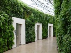 Longwood Gardens. - these are actually doors to individual bathrooms.