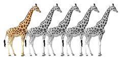 100 best historical fiction | Giraffe Days
