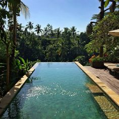 It's a Man's World It's a Man's World Backyard pool paradise Summertime Sadness, Outdoor Pics, Outdoor Decor, Beautiful Pools, Beautiful Places, Deco House, Nature Landscape, Desert Life, Its A Mans World