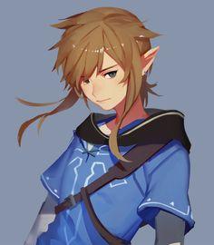Link Wii U