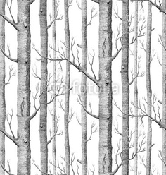 beibehang Birch Tree pattern non-woven wood wallpaper roll modern wall paper simple wallpaper for living room papel de parede Tree Wallpaper Bedroom, Birch Tree Wallpaper, Forest Wallpaper, Home Wallpaper, Wallpaper Roll, Wallpaper Ideas, Print Wallpaper, Nursery Wallpaper