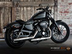 Love this H-D XL 883 Iron!!