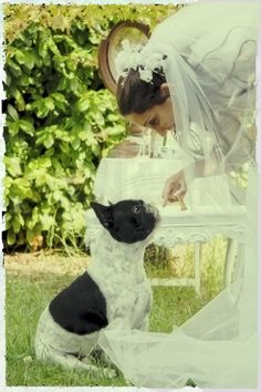 Rocco in wedding shoot
