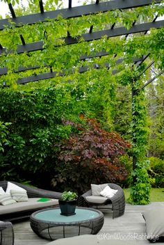 The wooden pergola is a good solution to add beauty to your garden. If you are not ready to spend thousands of dollars for building a cozy pergola then you may devise new strategies of trying out something different so that you can re Diy Pergola, Building A Pergola, Metal Pergola, Wooden Pergola, Building Plans, Cheap Pergola, Casas Country, Grape Arbor, Garden Architecture