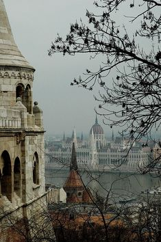 Budapest, Hungary | One of the most beautiful and culturally inspiring places I have ever been. I can't wait to go back. I took a picture identical to this.