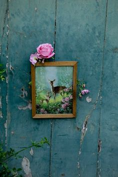 Framed woodland pictures on the fences and shed - to spray with laquer