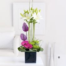 A striking arrangement with lillies, anthurium and gerbera arranged in a modern container. Other flowers will vary depending upon seasonal availability.