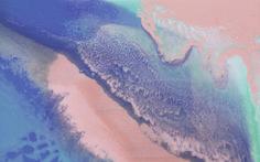 Laura Stewart Pink/Purple/Green/Blue Painted Desktop Wallpaper/Screensaver