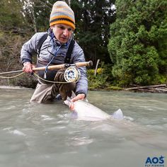 Steelhead catch and