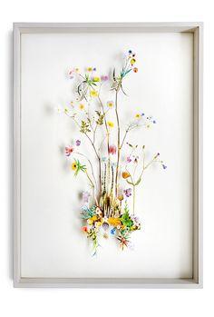 flower pressing | Tumblr