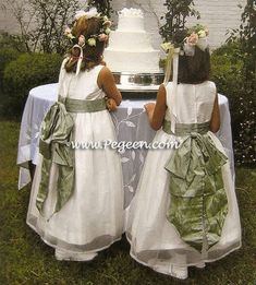 Flower girl dress in antique white and sage green with an organza skirt.