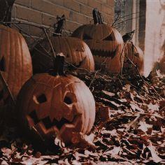 ˢᶜᵃᵗᵗᵉʳᵉᵈ ᵃˢʰᵉˢ ᵒᶠ ʳᵒˢᵉˢ - In autumn, every woman is a little witch. Halloween Icons, Halloween Pictures, Halloween Season, Halloween Town, Vintage Halloween, Fall Pictures, Vintage Fall, Halloween Wallpaper Iphone, Fall Wallpaper