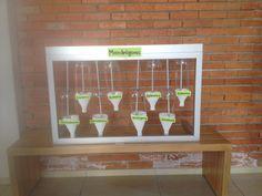Día de la presentación de la jardinera... Le pusimos unos letreros temporales para representar el tipo de cada planta y el nombre del equipo con sus integrantes! Ya estamos listas y emocionadas por presentar