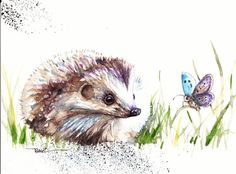 Original Watercolour Painting by Be Coventry,Animals,Realism,Hedgehog no.2