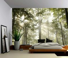 Autumn Tree Forest Lake - Large Wall Mural, Self-adhesive Vinyl Wallpaper, Peel & Stick fabric wall decal Vinyl Wallpaper, Adhesive Wallpaper, Forest Wallpaper, Tapestry Wallpaper, Feature Wallpaper, Wallpaper Murals, Bedroom Wallpaper, Wallpaper Roll, Wallpaper Ideas
