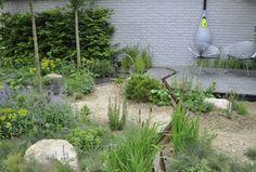 Some interesting water saving gardens