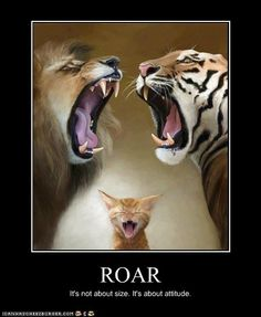ROAR: It's not about size. It's about attitude.