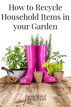 There are many ways to reuse household items in your garden. Find out how to use coffee, citrus peels and even newspaper in your garden!