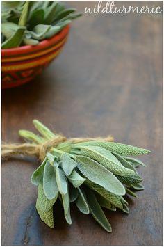 10 Top Medicinal Uses & Side Effects Of Sage (Salvia Officinalis) | Salvia | wildturmeric