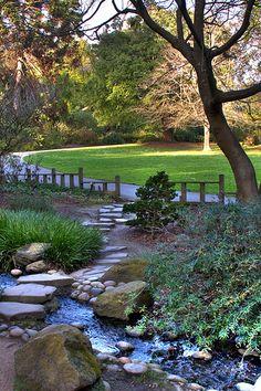 San Francisco❤ Botanical Garden