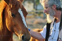"""Can a Gentle Horse and Country Charm Soothe Dementia?"" on Alzheimer's Support"