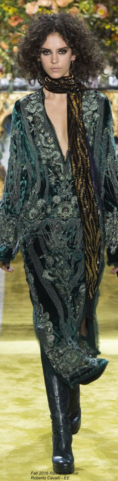Fall 2016 Ready-to-Wear Roberto Cavalli