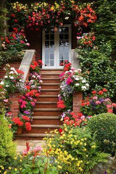 Bonita entrada..,
