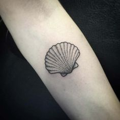 Dotwork sea shell tattoo