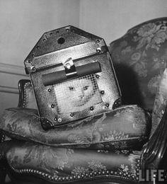 John Phillips, A cat in a carrier during an air raid, 1941.