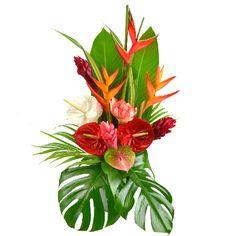 114 Best La Martinique Images On Pinterest Caribbean Caribbean