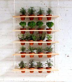 Prateleira com horta para parede
