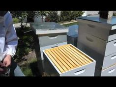 How to Harvest Harvest Honey - Beekeeping Tutorials - YouTube