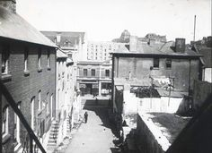Little Essex St,aka Brown Bear Lane,the Rocks of Sydney.Photo taken from Harrington St. The Rocks Sydney, Historical Pictures, Family History, Past, Australia, Brown Bear, Country, 1920s, Depression
