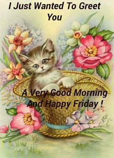 Good Morning Greeting Cards, Good Morning Greetings, Good Morning Inspirational Quotes, Good Morning Quotes, Blessed Friday, Happy Friday, Cute Animals, Teddy Bear, Blessings