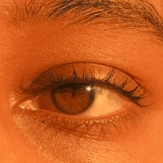True beauty is feared Brown Eyes Aesthetic, Gold Aesthetic, Orange Aesthetic, Aesthetic Colors, Aesthetic Photo, Aesthetic Pictures, Paradis Sombre, Pretty Brown Eyes, Different Aesthetics