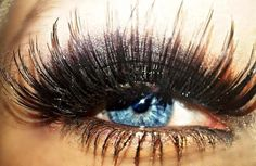 Best. Lashes. Ever.