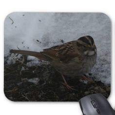 Sparrow, Mousepad. Mouse Pad