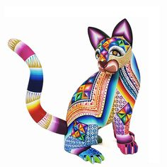 Magaly Fuentes Cat