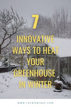 Backyard Greenhouse, Greenhouse Plans, Winter Greenhouse, Greenhouse Growing, Gardening For Beginners, Gardening Tips, Garden Compost, Vegetable Garden, Garden Ideas To Make