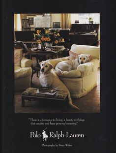 Ralph Lauren Home collection ad, 1984. This classic Ralph Lauren home campaign was photographed by legendary fashion photography & dog lover Bruce Weber.