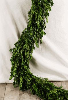 Natural Preserved Boxwood Garland - to drape and decorate the stairwell leading to the reception.