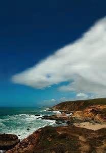 People That Look Like Clouds - Bing Images