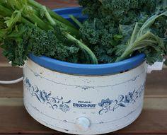 Over 80 Vegetarian Slow Cooker Recipes