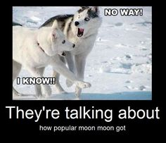 @Paige Rolin Who ivited fucking moon moon?! bwuhahahaha