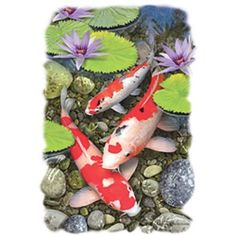 Koi Fish Pond HEAT PRESS TRANSFER for T Shirt Tote Sweatshirt Quilt Fabric 549a #AB