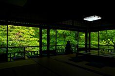 瑠璃の庭 - 瑠璃光院 / Rurikou-in Komyo-ji Temple by Yuya Horikawa on 500px